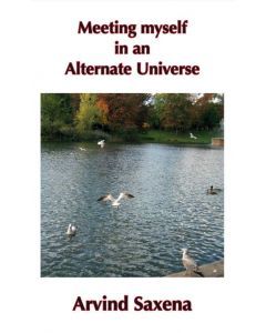 Meeting myself in an Alternate Universe