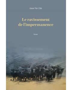 Le ravissement de l'impermanence